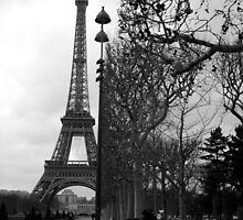 Eiffel Tower - Paris by Rob Foster