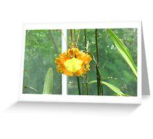 Yellow flower. Greeting Card