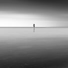 Lonely by greenbunion
