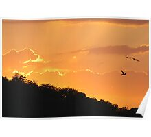 Clarence River Sunset Poster