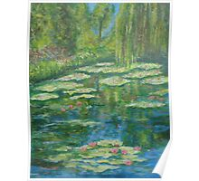 Water Lily pond with weeping willow Poster