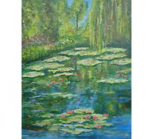 Water Lily pond with weeping willow Photographic Print