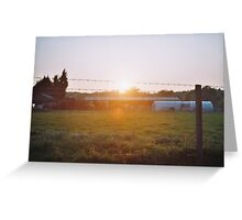 Sun passing through the fence Greeting Card