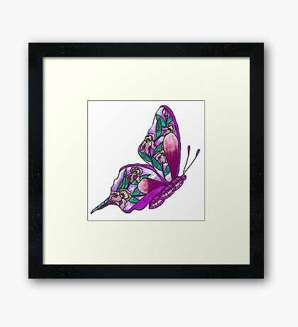 Iris Butterfly Illustration-2 Framed Print