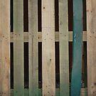 Stripes by Danielle  La Valle