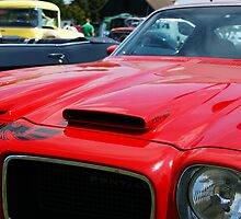 Firebird by KAGPhotography