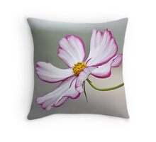 White and purple cosmos flower Throw Pillow