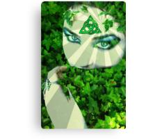 Nature Druid Canvas Print