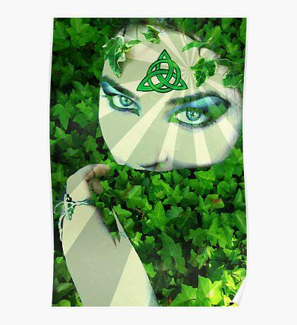 Nature Druid Poster