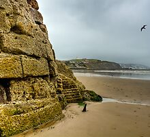 From the Outer Harbour, Folkestone by Alice Gosling