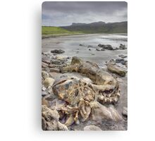 Beached Evermore Canvas Print