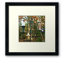 so much to choose from! Framed Print