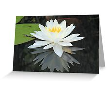 Mirror Reflection Greeting Card