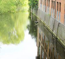 Reflections along the riverside by missmoneypenny