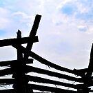 Antietam by Robin Black