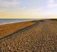 Pebble and Shingle Beach, Shoreham by Steve