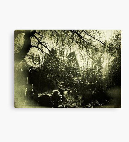 Beneath the boughs Canvas Print