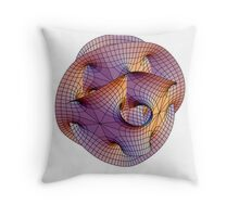 Calabi-Yau Manifold Throw Pillow