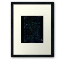 USGS Topo Map Oregon Nye 280945 1967 24000 Inverted Framed Print