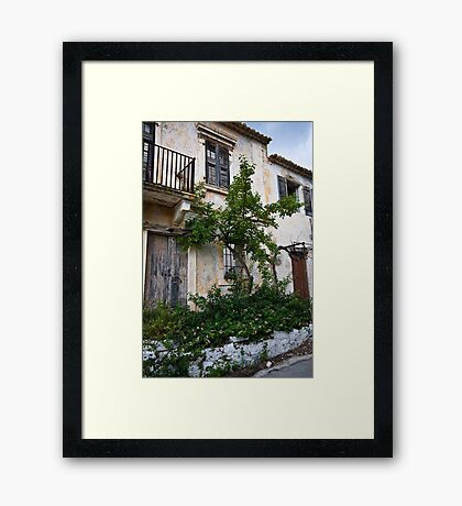 The Lonely Lemon Tree Framed Print