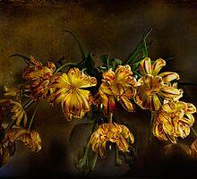 Tulip Textures by Ann Garrett