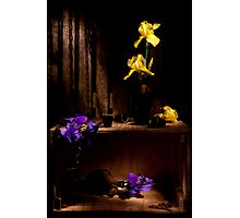 Treasure Iris Still life Photographic Print