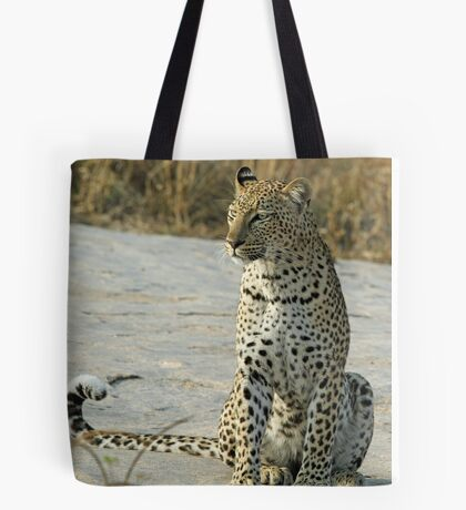 Young confident adult leopard! Tote Bag