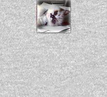 Ragdoll Kitten  Tank Top