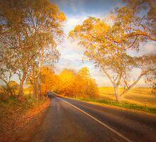 Autumn Road - Woodside, The Adelaide Hills, South Australia by Mark Richards