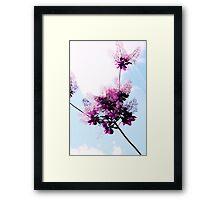 Floral Lace Framed Print