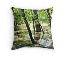 River Flooding Throw Pillow