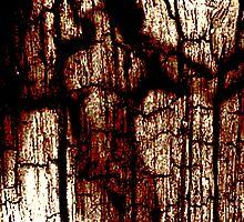 Vergaenglich by Bela-Manson