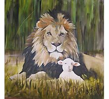 the lion shall lie down with the lamb  Photographic Print