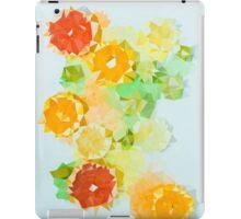 Triangulated citrus iPad Case/Skin