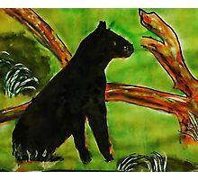 Black Panther  (opps  was going to be leopard)  for the Africa series, watercolor Photographic Print
