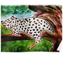 The Leopard, for Africa Series, watercolor Poster