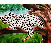 The Leopard, for Africa Series, watercolor Photographic Print