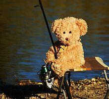 The Bear Went Fishing by Liza Barlow