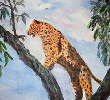 Jaguar in tree by GEORGE SANDERSON