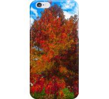 Sugar Maple Fall iPhone Case/Skin