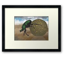 Beetle by Anne Winkler Framed Print
