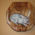 The Australian  Bilby, on the endangered list. by gunnelau