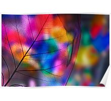 Multicolored fragility Poster