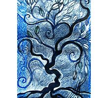 Imaginary Tree Photographic Print