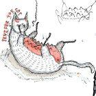 Jenifer the cat by Ben Cresswell