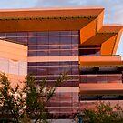 Arizona Sunset Design by phil decocco