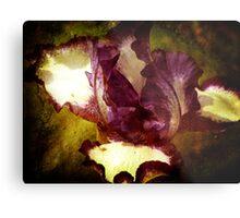 A Manipulated Iris Metal Print