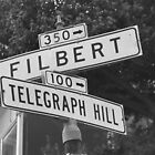 Filbert and Telegraph by perrycass