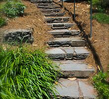 Garden Stone Stairway By Jonathan Green by Jonathan  Green