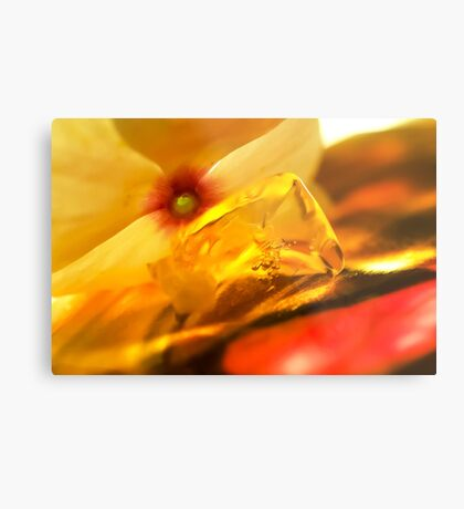 Light That Paints Metal Print